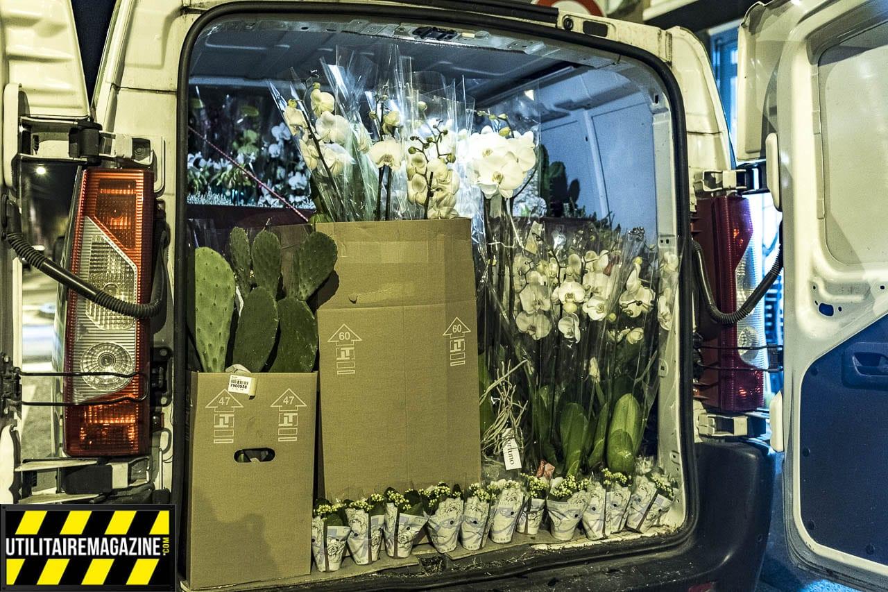 Quelques étagères ajoutées à l'arrière permettent de stocker plus de plantes